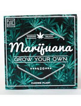 Kweek je eigen marijuana