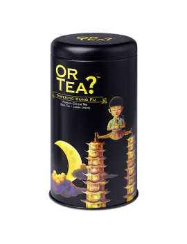 Towering Kung Fu tin canister - Or Tea?