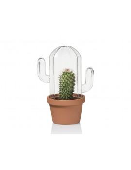 Glazen cactus terrarium - Bitten Design