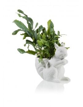 Eekhoorn bloempot - Bitten Design