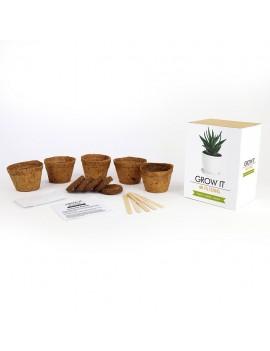 Kweek je eigen luchtzuiverende planten