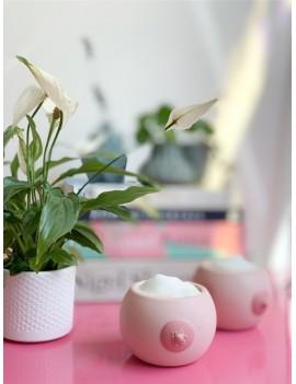 Borst bloempotjes set van 2 - Bitten Design